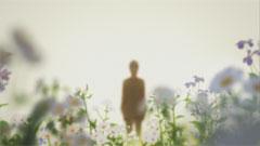 映画冒頭の「花」の見る夢?で花畑(正に「花」の世界)で黒くぼんやりとしている狼が侵入し人間に変わるであろうとするシーンは「花」が異性と出会うだろうという一